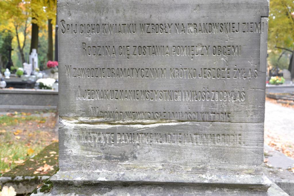 Nagrobki Cmentarz Lipowa Lublin
